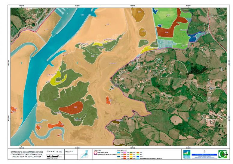 Cartografía de Hábitats de Interés Comunitario del LIC Ría de Villaviciosa